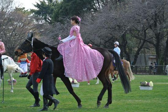 Freedom horse show 3.jpg